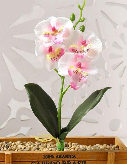 Orchidée artificielle avec feuilles rose